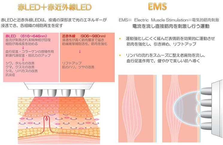 プリマプロ  エレクトロポレーション・EMS・RF・赤LED・近赤外線 機能